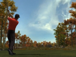 Screenshot 2 for Tiger Woods PGA Tour 2008