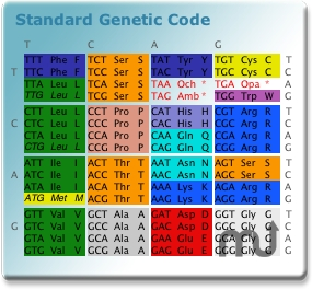 Screenshot 1 for Genetic Code Widget
