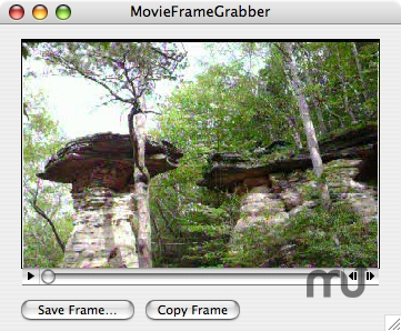 Screenshot 1 for MovieFrameGrabber