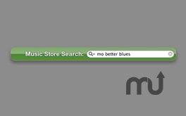 Screenshot 1 for Music Store Search