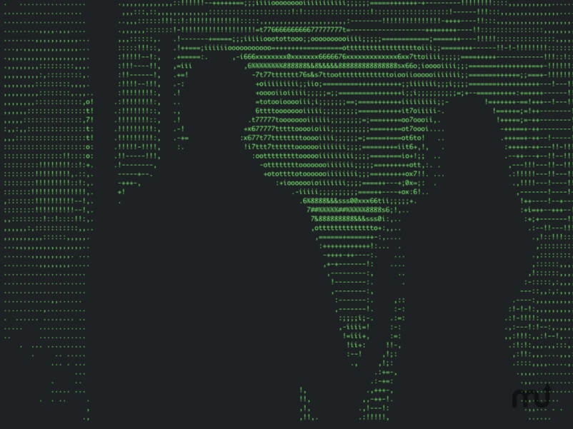 Screenshot 1 for ASCII Projektor