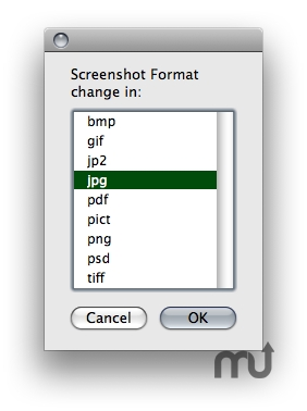 Screenshot 1 for ScreenShotFormatX