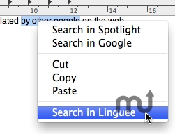Screenshot 1 for Linguee Search Service