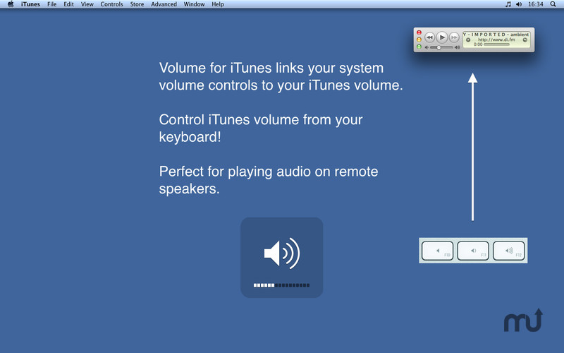 Screenshot 1 for Volume for iTunes
