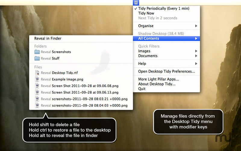 Screenshot 3 for Desktop Tidy