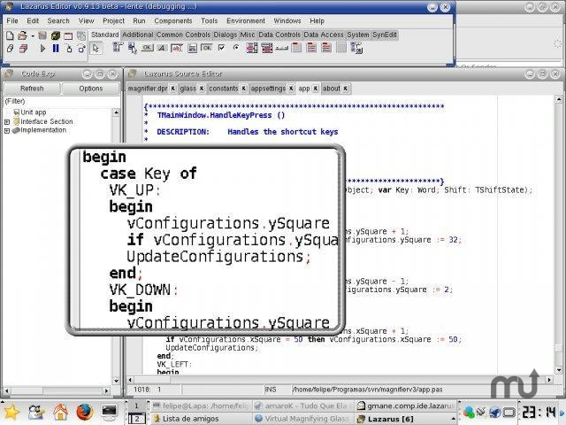 Screenshot 1 for Virtual Magnifying Glass