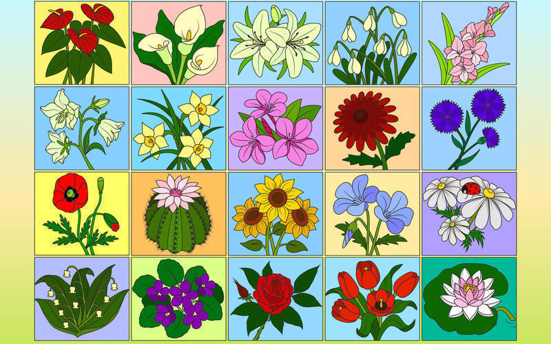 Screenshot 2 for Color by Numbers - Flowers