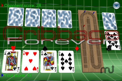 Screenshot 1 for Cribbage Forever