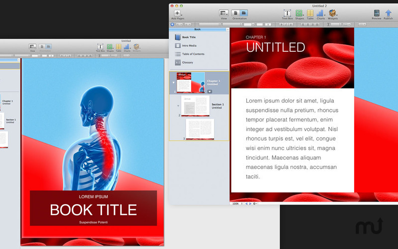 Screenshot 2 for Templates for iBooks Author