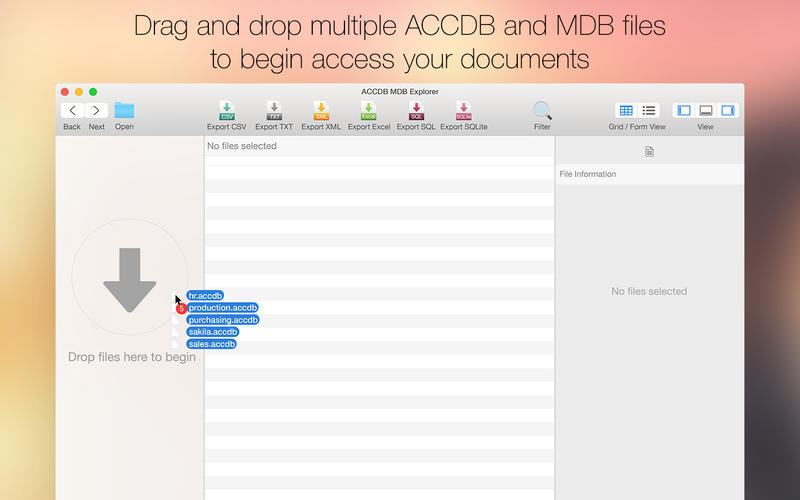 Screenshot 2 for ACCDB MDB Explorer