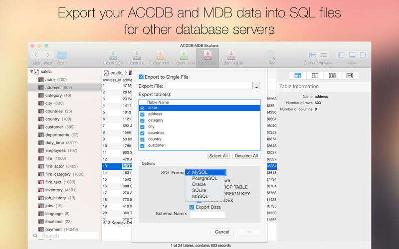 Screenshot 5 for ACCDB MDB Explorer