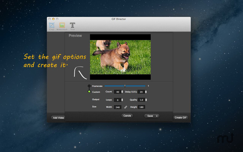 Screenshot 3 for GIF Director