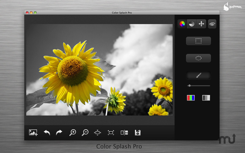 Screenshot 1 for Color Splash Pro
