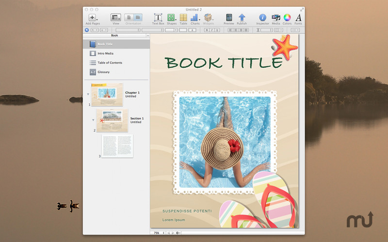 Screenshot 2 for Designs for iBooks Author