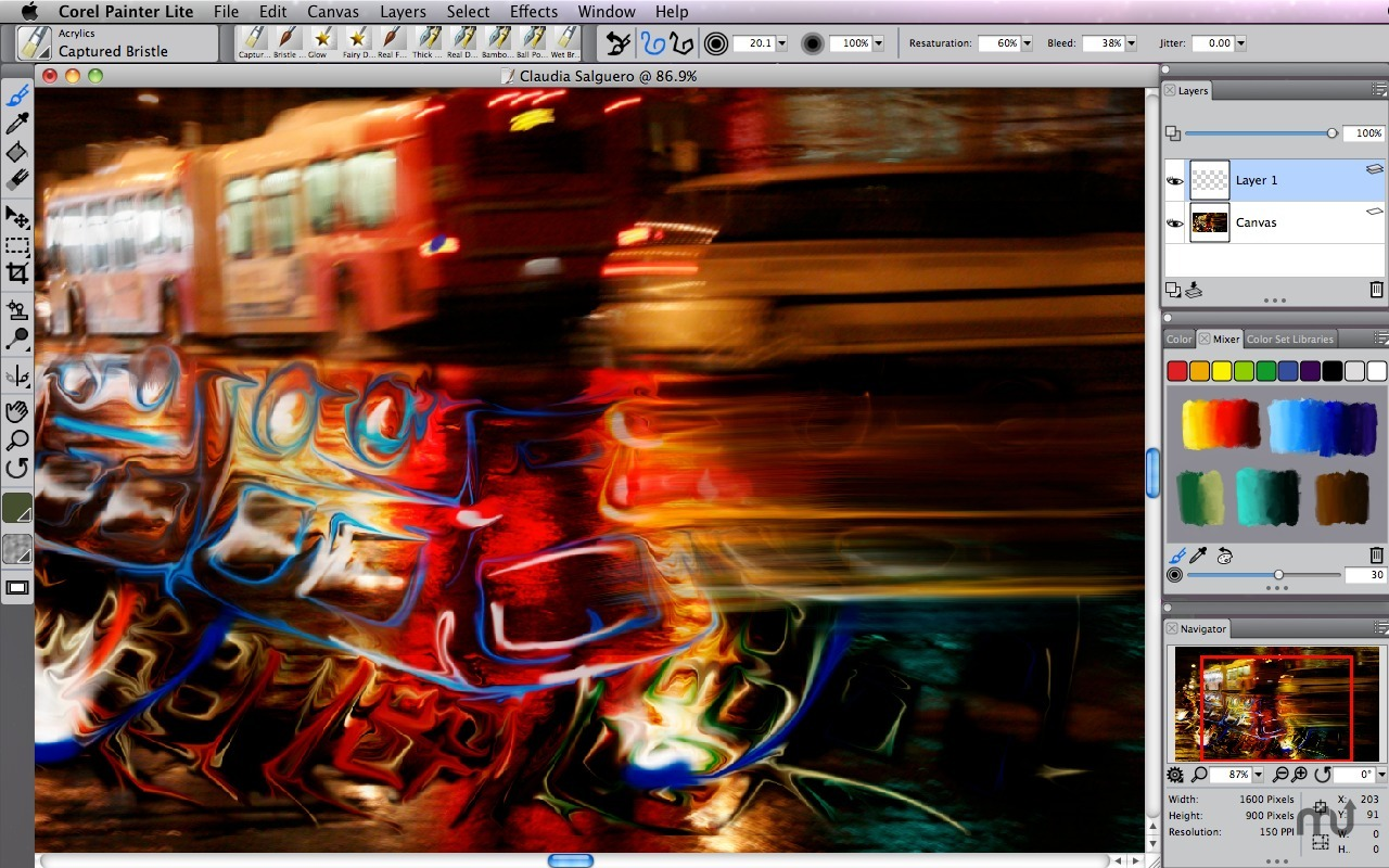 Screenshot 1 for Corel Painter Lite