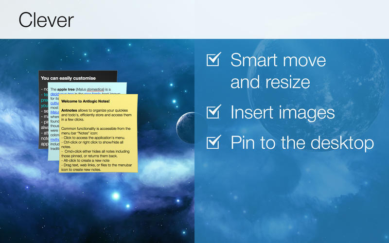Screenshot 3 for Simple Antnotes