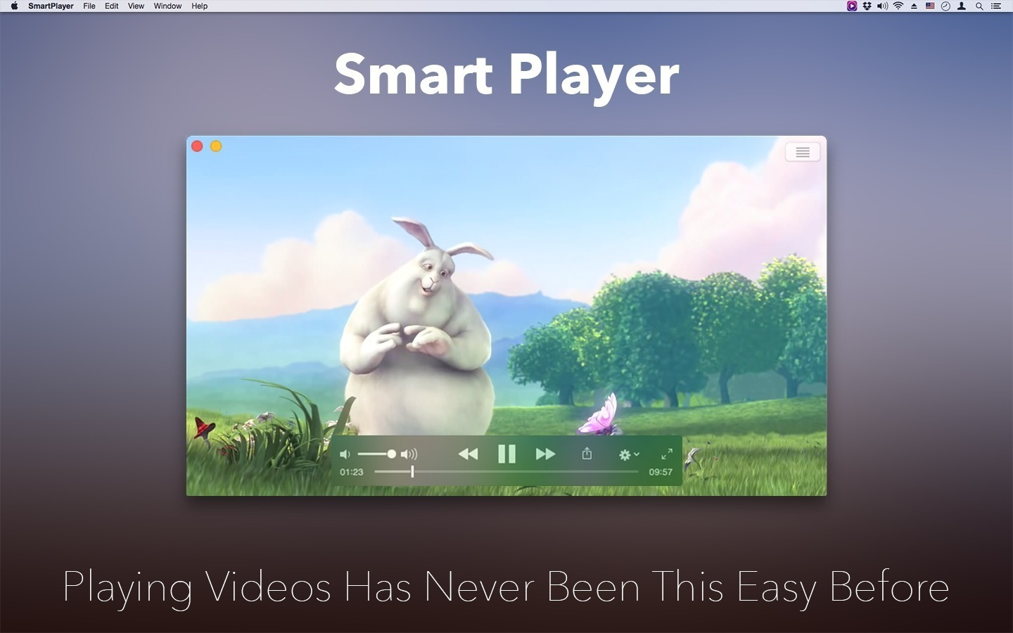 Screenshot 1 for Smart Player