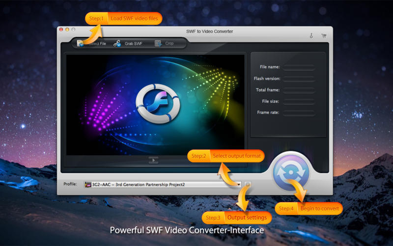 Screenshot 1 for SWF to Video Converter
