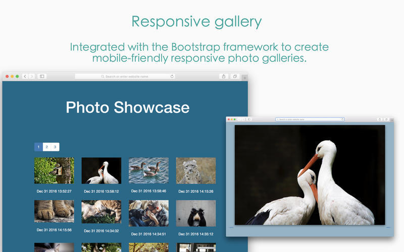 Screenshot 4 for Responsive Photo Grid