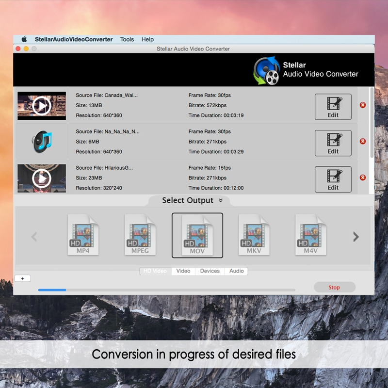 Screenshot 2 for Stellar Audio Video Converter