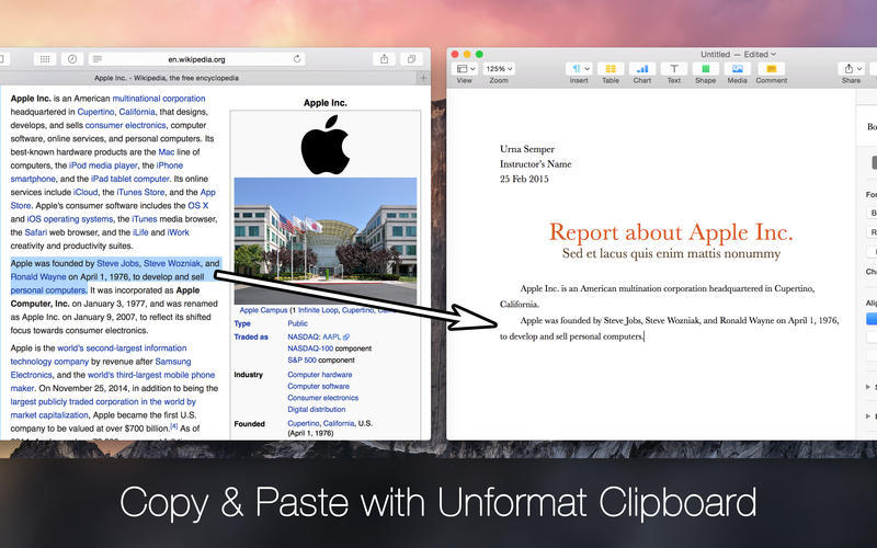 Screenshot 1 for Unformat Clipboard
