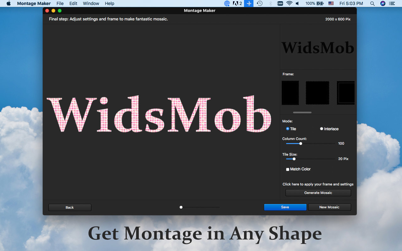 Screenshot 4 for WidsMob Montage